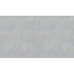 Dimples 1867 C5 licht zilver